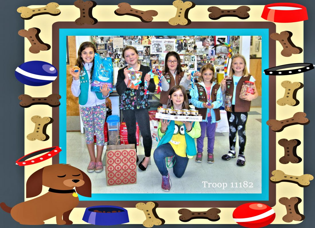 Photo of Girl Scout Troop 11182
