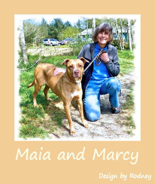 Photo of Maia on the shelter lawn with Marcy